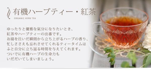 有機ハーブティ・紅茶